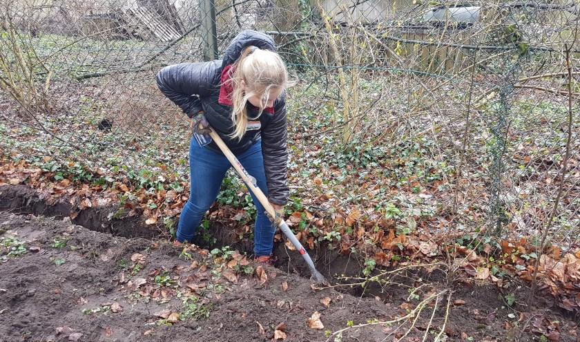 Graven om struiken en planten te redden .