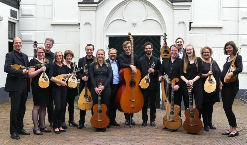 Het Zwols Mandoline Kamerorkest Het Consort.