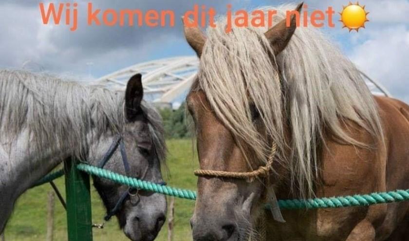 Vorig jaar kwamen er al geen paarden meer, het was toen te warm.