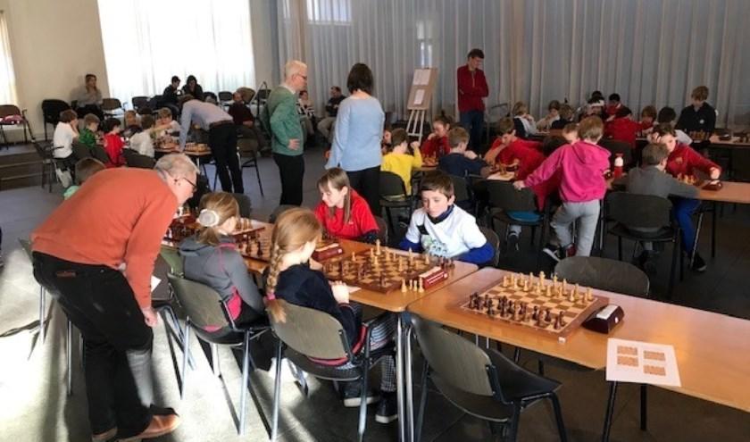 In de Vredehorst streden 48 leerlingen om het schoolschaakkampioenschap van Wageningen.
