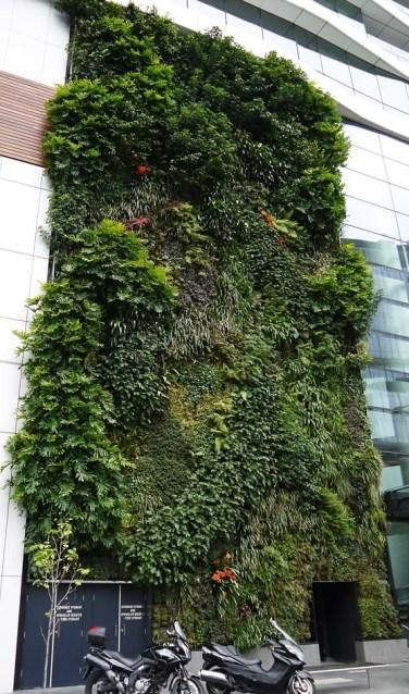 Dankzij verticale tuinen kunnen mensen met een kleine tuin of balkon toch veel groenbeleving krijgen. (foto: PR)