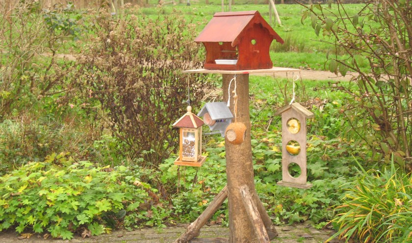Doe mee aan de tuinvogeltelling in het Streeknatuurcentrum. (Foto: pr)