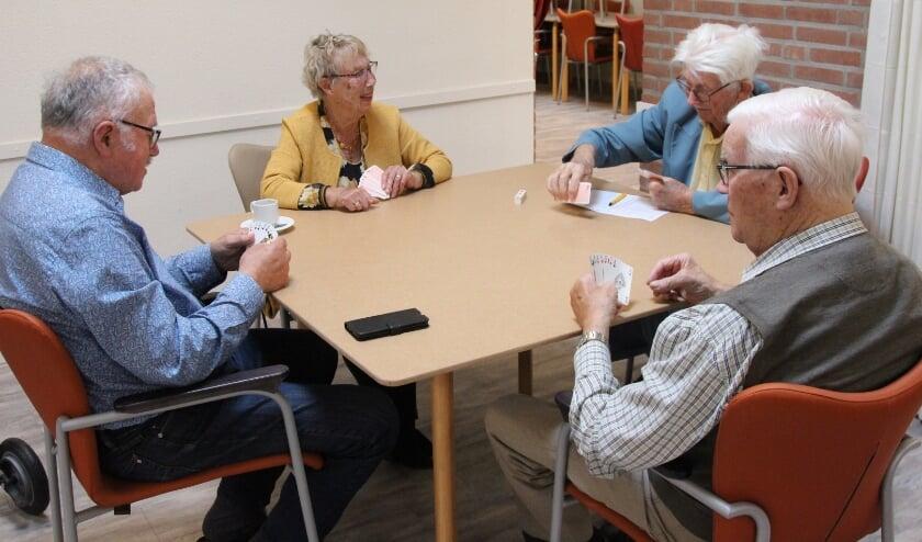 <p>Het is een traditie: elke eerste zondagmiddag van de maand spelletjesmiddag in De Roef. Foto: Johan Maaswinkel</p>