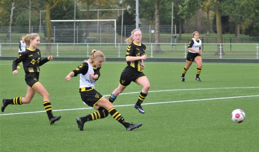 <p>Niet de heren maar de meiden van Redichem, de club heeft vijf damesteams, leven zich heerlijk uit in onderlinge partijtjes op het kunstgrasveld. Foto: gertbudding.nl </p>
