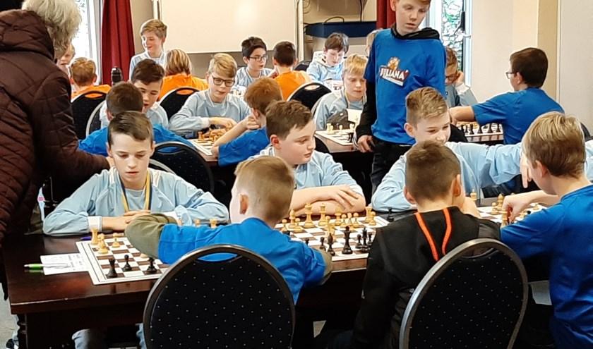 jonge schakers in actie