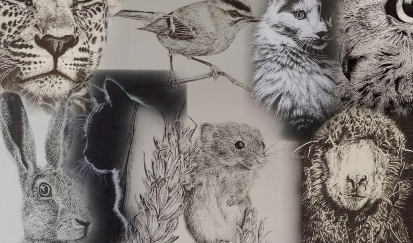 Werken van kunstenares Katja Dupont