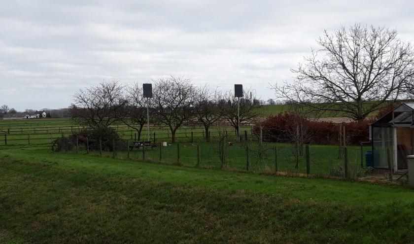 Tijdelijke vleermuiskasten in tuin aan Ameidsdam in Spijk. (foto: Lieke van der Sande)