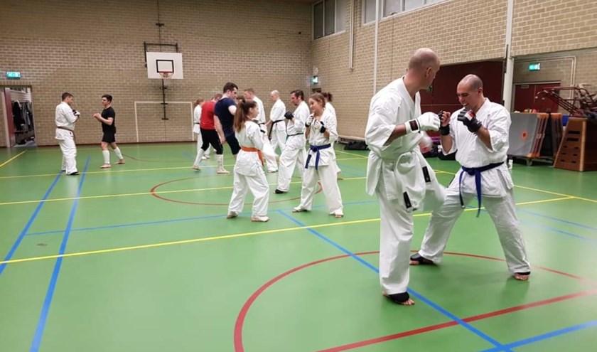 Sensei Twan Smolders beoefent al 23 jaar Kyokushinkai Karate en is met zijn dojo aangesloten bij de NKKO/KWF.