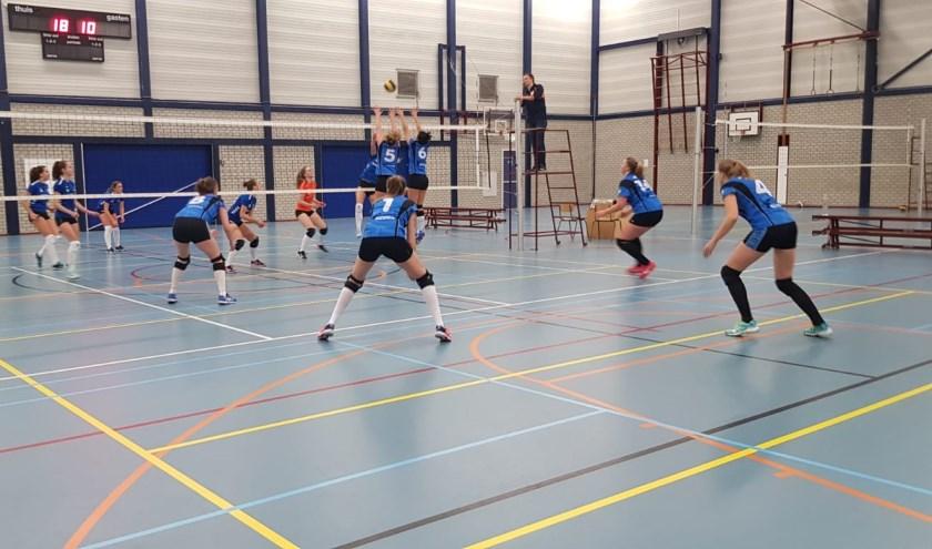 Pauwervoll geeft weinig weg in sporthal Corlaer in Nijkerk.