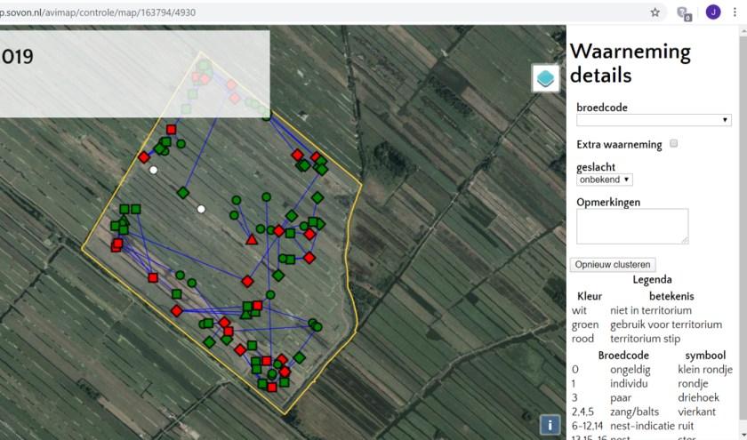 Groen: mijn kievitwaarnemingen bij de vijf tellingen in m'n telgebied. Symbolen: gedrag, zoals balts. Rood: het berekende aantal broedparen.