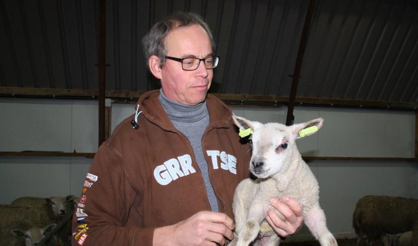Jan van Woudenberg tussen zijn schapen en lammeren