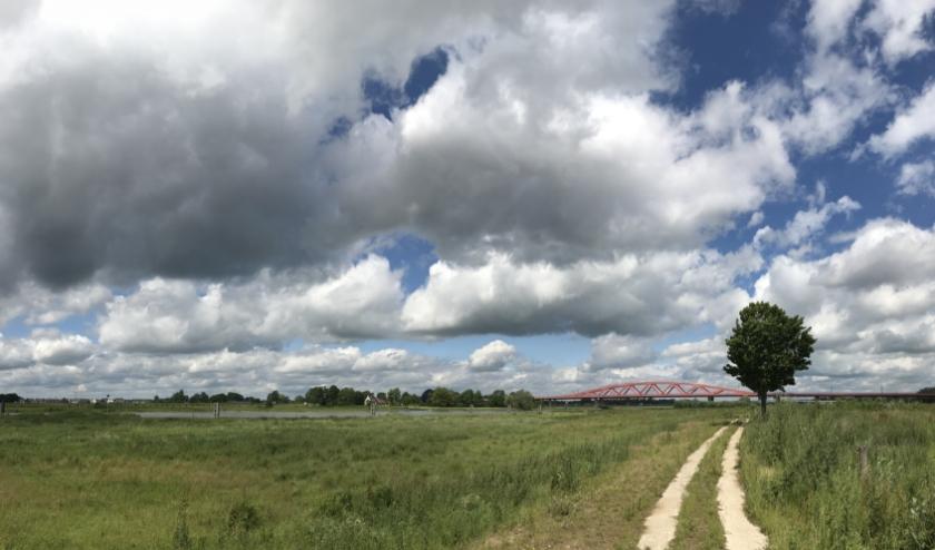 Op de foto de uiterwaarden van Schelle en Oldeneel, ter hoogte van de Hanzeboog. Rechts van het pad worden jonge boompjes aangeplant. De uiterwaarden links blijven onbegroeid, zodat de doorstroming bij hoog water blijft gegarandeerd.