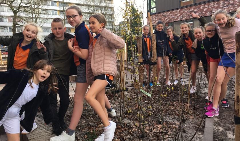 De Julianakids hebben veel plezier in het biologische voedselbos. Rotary Zandzegge en filosoof Lammert Kamphuis dragen een deel van de opbrengst van de lezing af aan dit voedselbos.
