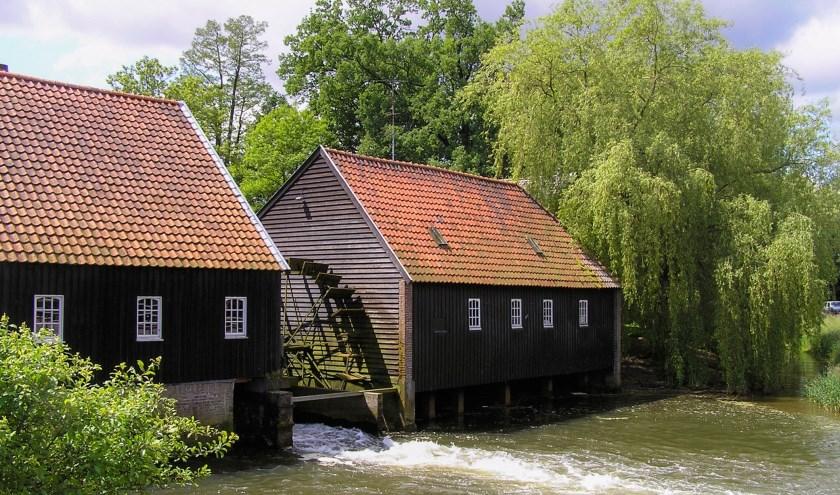 De Dommelse watermolen speelt, net als de Venbergse Watermolen, een rol in het boek Watermolens in Noord-Brabant.