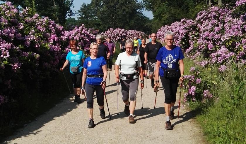 Nordic Walkers locatieloop Oldenzaal