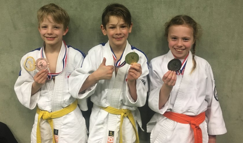 Lars brons, Ilan districtkampioen en Jelena brons