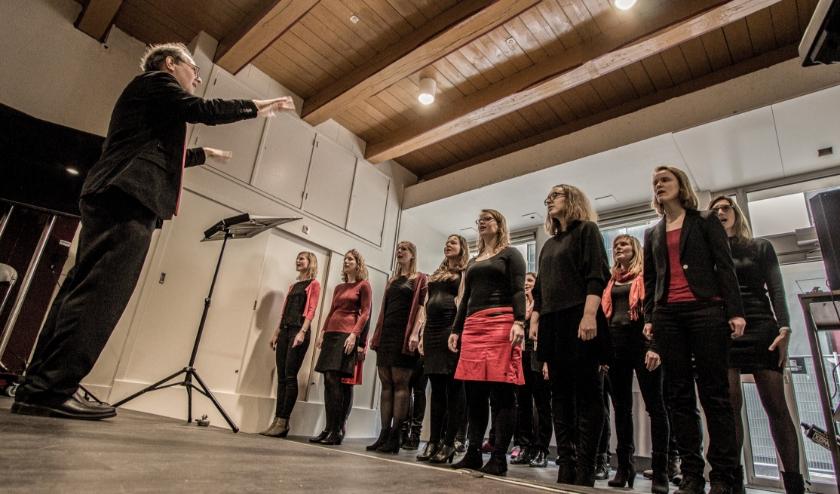 A-capella koor Multiple Voice is een van de koren die zaterdag meedoet aan Zwolle Zingt. Het koor zingt om 14.40 uur in de Bovenfoyer.