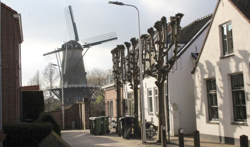 De idyllische Walkade met historische panden,  leilindes en zicht op de molen wordt - net als de IJsselpoort en het Brandspuithuisje - verstoord door moderne lichtmasten met felle verlichting. (Foto: Lysette Verwegen)