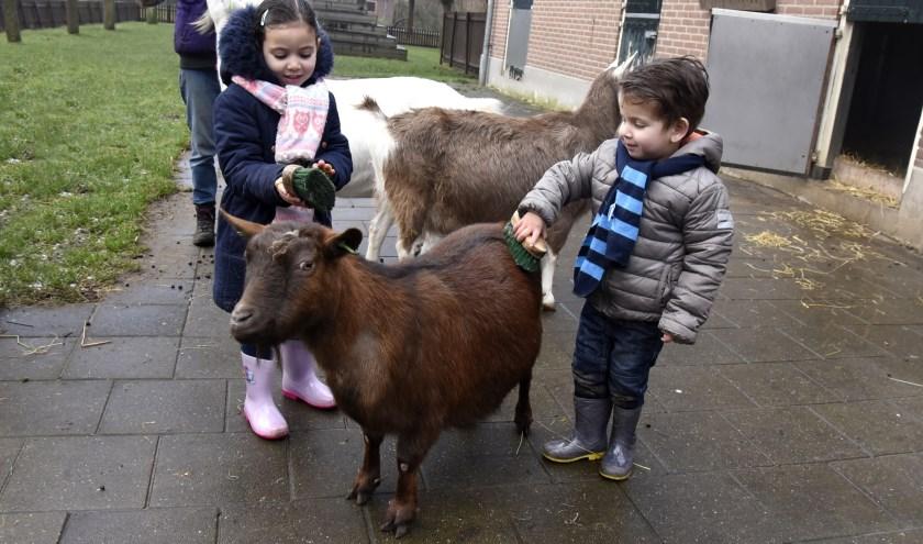 Komende voorjaarsvakantie is er van alles te doen op de kinderboerderij. Foto: Marianka Peters