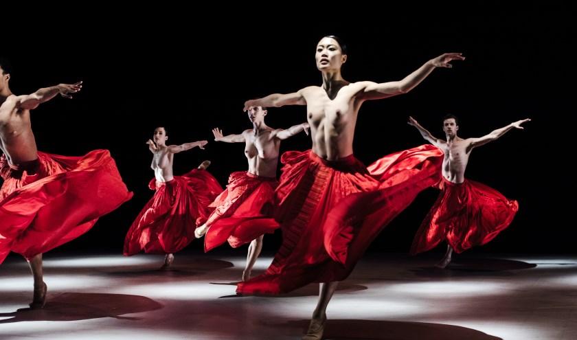 Bella Figura is onderdeel van de ode aan Jirí Kylián van het Nederlands Dans Theater. (Foto: Joris-Jan Bos)