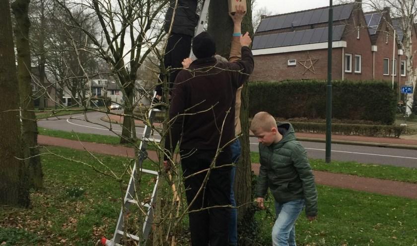 Nestkastje wordt opgehangen langs De Reede.
