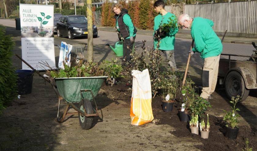 Bijna een jaar na aanvraag is de werkgroep Steenbreek bezig met de aanleg van een groenstrook (Foto's en tekst: Thea van der Raaf)