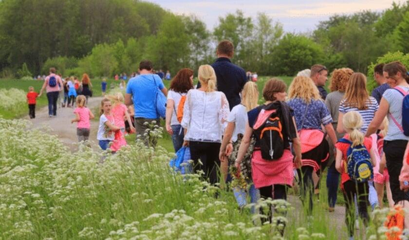<p>Terug van weggeweest, de avondvierdaagse is dit jaar weer in Hoogvliet</p>