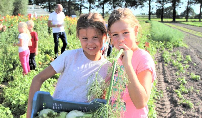 Dit jaar organiseren boeren en tuinders opnieuw een serie Foodcamps op het erf samen met LekkerBoer.