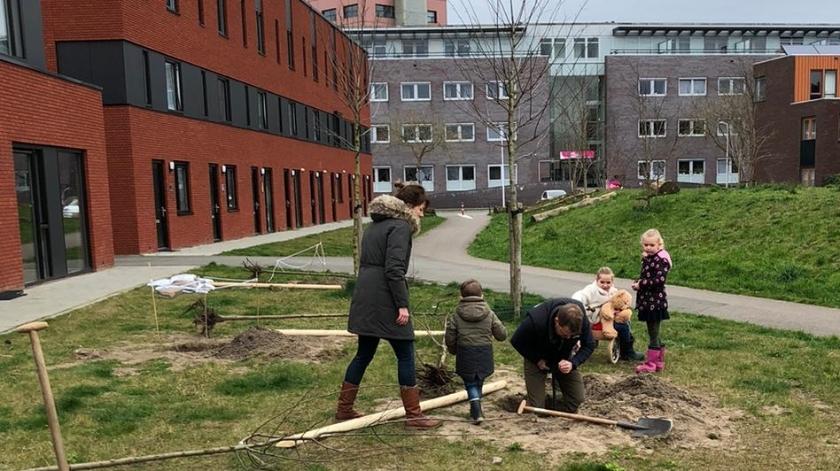 Buurtgenoten hard aan het werk om bomen te planten