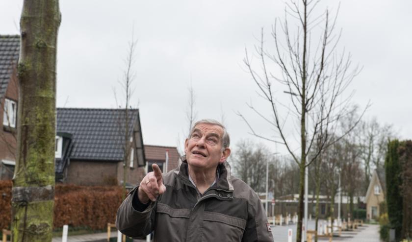Henk Scholten, al ruim een halve eeuw woonachtig aan de Oude Wisselseweg, wijs naar één van de pas geplante bomen. Foto: Dennis Dekker