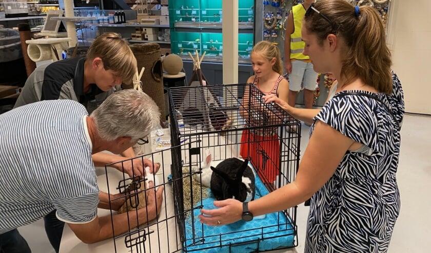 <p>De dierenarts vaccineert een van de ingebrachte tamme konijnen. O woensdag 30 september wordt de mogelijkheid opnieuw aangeboden. (Foto: Dierspecialist Berben)&nbsp;</p>