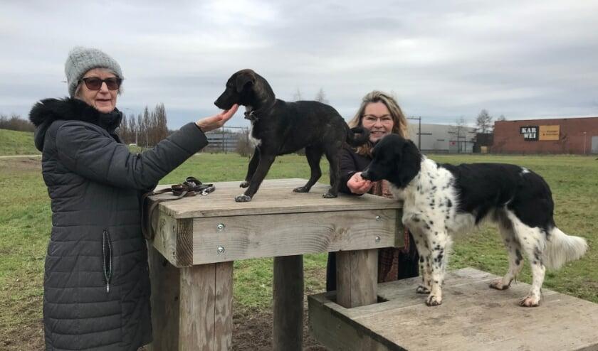 <p>Gerry Ising (links) en Debra Priester (rechts) met hun honden Kimmie en Neeno.</p>
