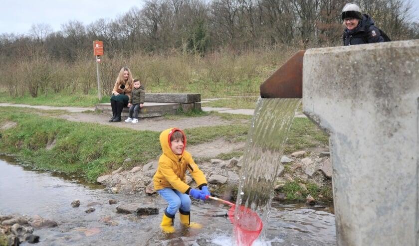 <p>Foto: gertbudding.nl</p>