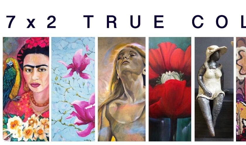 <p>Groepsexpositie True Colors in galerie Van Baalen.</p>