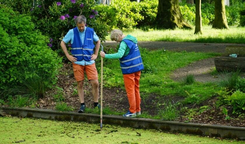 <p>Joachim Rozemeijer met zijn buurvrouw in actie. Het kroos is op deze foto goed zichtbaar.</p>
