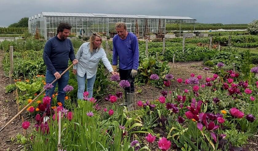 <p>Simon Fust, Carlijne van Santvoort en Kees Tanis inspecteren de onbespoten groenten, kruiden en bloemen op Bommels Buiten.</p>