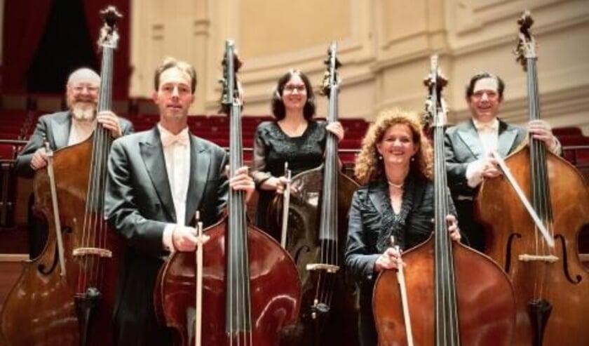 <p>Contrabasta is de basgroep van Phion (Gelders Orkest & Orkest van het Oosten).&nbsp;</p>