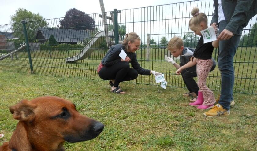 <p>Sanne Booij prikt met haar dochter Anna en zoon Levi een vlaggetje in hondenpoep aan de Kruidenlaan. Op de voorgrond Puck, die deze hondenpoep daar niet gedeponeerd heeft.&nbsp;</p>