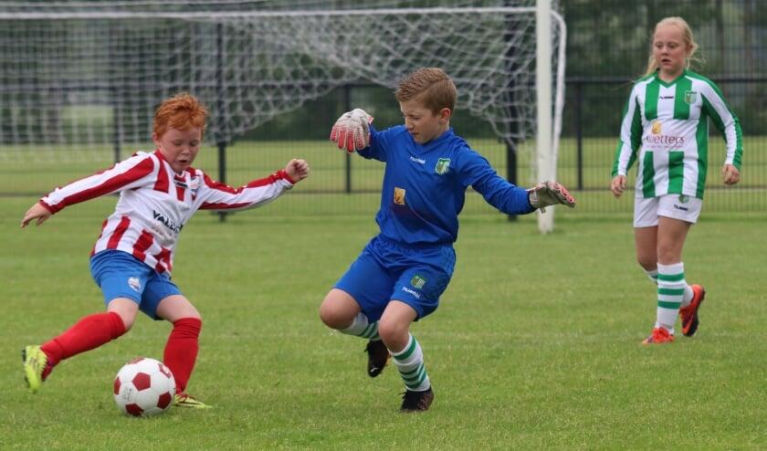 <p>Eindelijk weer competitievoetbal. Voor de regiocup troffen in Aalst Roda Boys en Achilles Veen JO09 elkaar.&nbsp;</p>