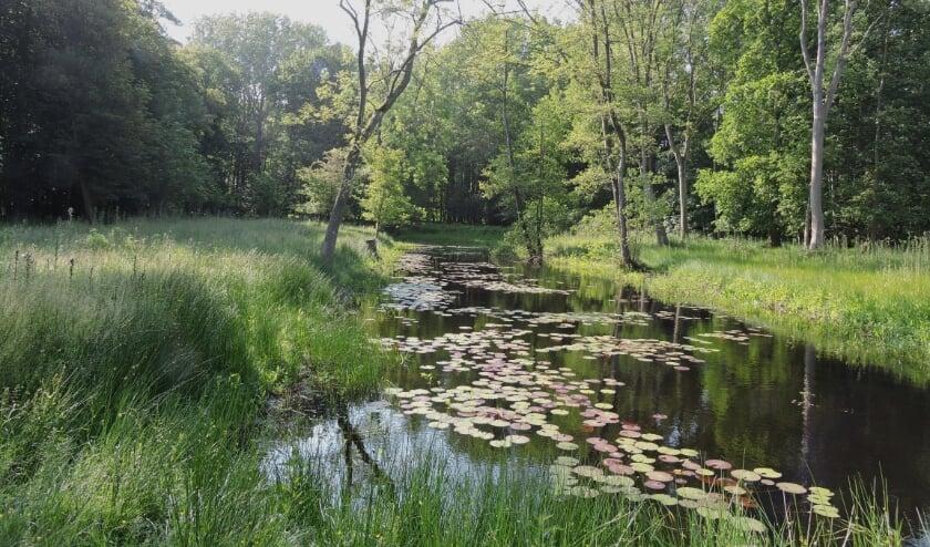 <p>Stichting Landschapsbeheer Zeeland (SLZ) houdt een aantal open werkdagen waar je kennis kan maken met groen vrijwilligerswerk.</p>