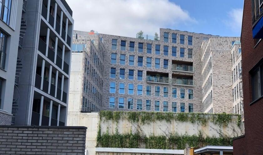 In Delft worden vooral kleinere - en dure - appartementen gebouwd. Er worden juist weinig woningen voor gezinnen gebouwd.