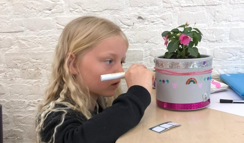 <p>Leerlingen hebben dit jaar bloempotjes beschilderd en versierd en er een plantje in gezet.</p>