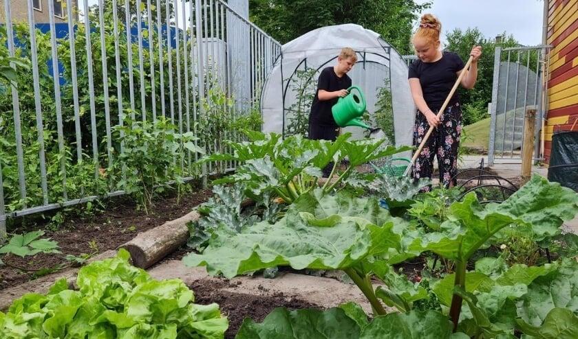 <p>Stijn en Isis zijn aan het tuinieren in de moestuin.&nbsp;</p>