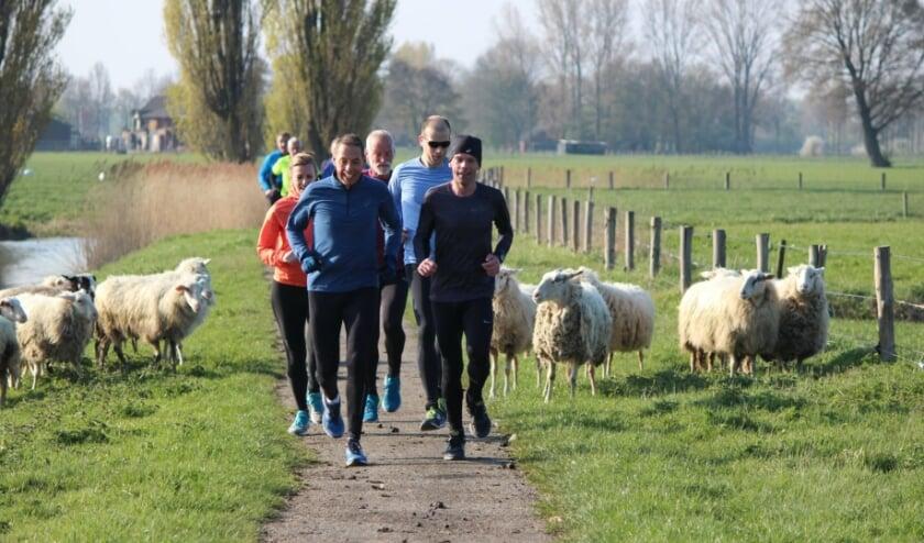 In 12 weken klaar voor de 5 kilometer hardlopen