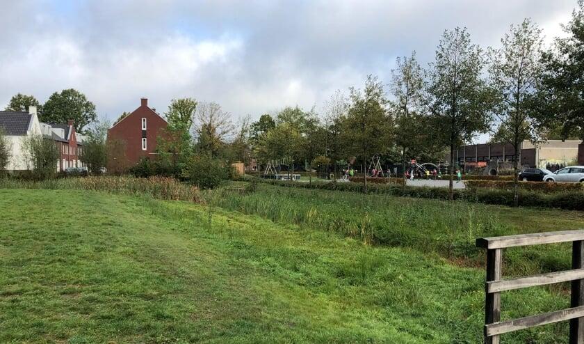 Links de huizen aan de Hamelijnckhof. Tussen deze huizen en Basisschool De Raagten zijn vaak hangjongeren aanwezig   | Fotonummer: fdaa9d
