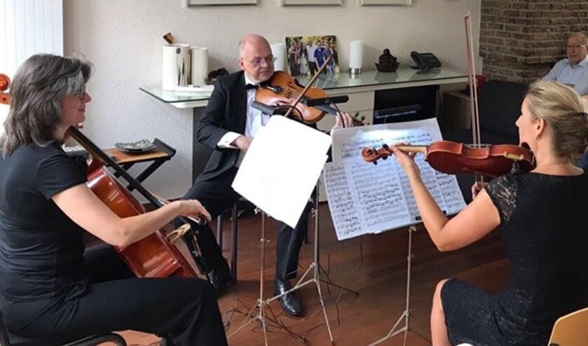 Gioia Kwartet   | Fotonummer: 29a9dc