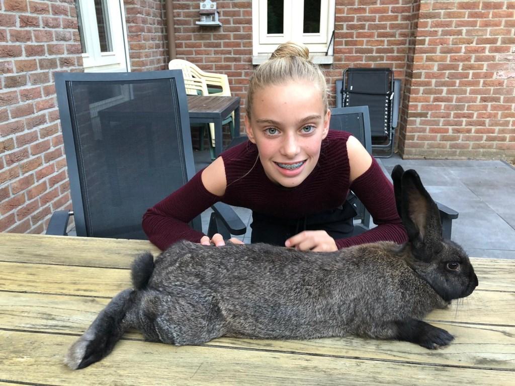 Donna samen met Jip. Vlaamse Reus van 5 maanden oud en 4,6 kg zwaar.  (Fam. Sanders)  © deMooiLaarbeekkrant