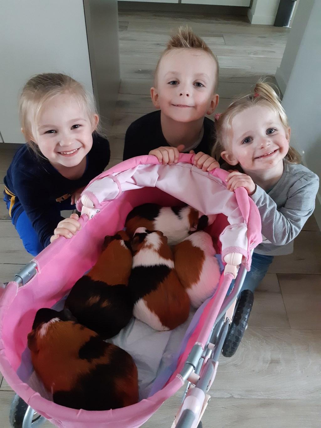 Mijn kinderen Amy, Cris en Jill met onze cavia's. (Karen Engels)  © deMooiLaarbeekkrant