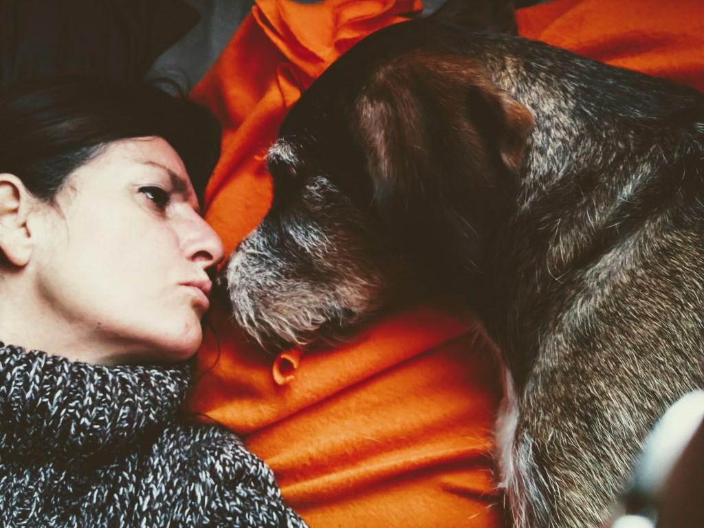 Dit is Diedel, mijn hond (Jolan Vlemmings)  © deMooiLaarbeekkrant