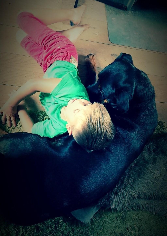 Onze hond 'Buurman' met zijn grote vriend Mas. (Debbie v.d. Berk)  © deMooiLaarbeekkrant